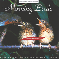 Morning Birds