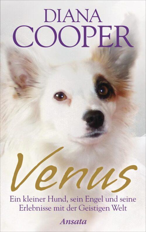 Venus Ein kleiner Hund sein Engel