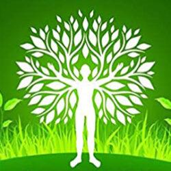 Baum und Natur